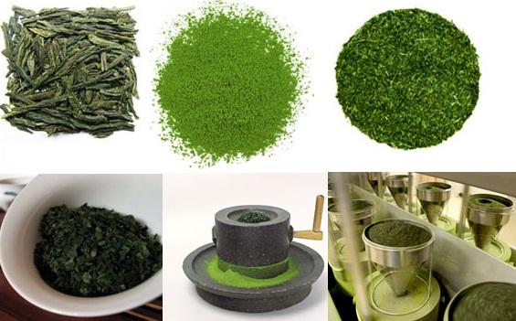 Cách làm bột trà xanh nguyên chất tại nhà từ lá trà tươi